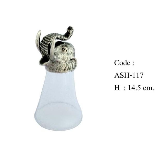 ASH-117